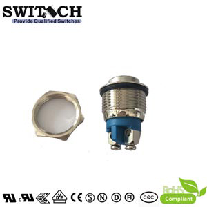 ZLQ16 LED IP67 flat top 3A 250VAC stainless steel push button switch with screw nuts