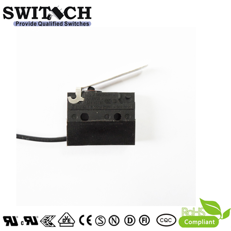 WS1-DSWH3-W150L100 Sealed Snap Action Switch Wire Type Arc Lever