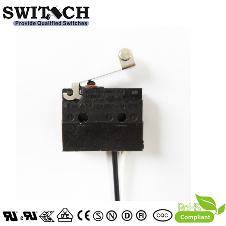 WS1-DSW5-W200D100 Sealed Snap Action Switch Wire Type Arc Lever