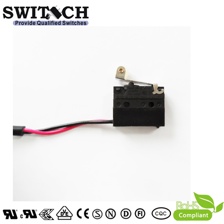 WS1-DSWB5-W150L675-08  Sealed Snap Action Switch Wire Type